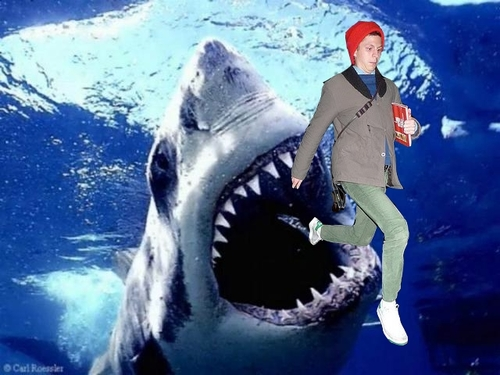 Fuck Yeah Prancing Cera - Shark Attack
